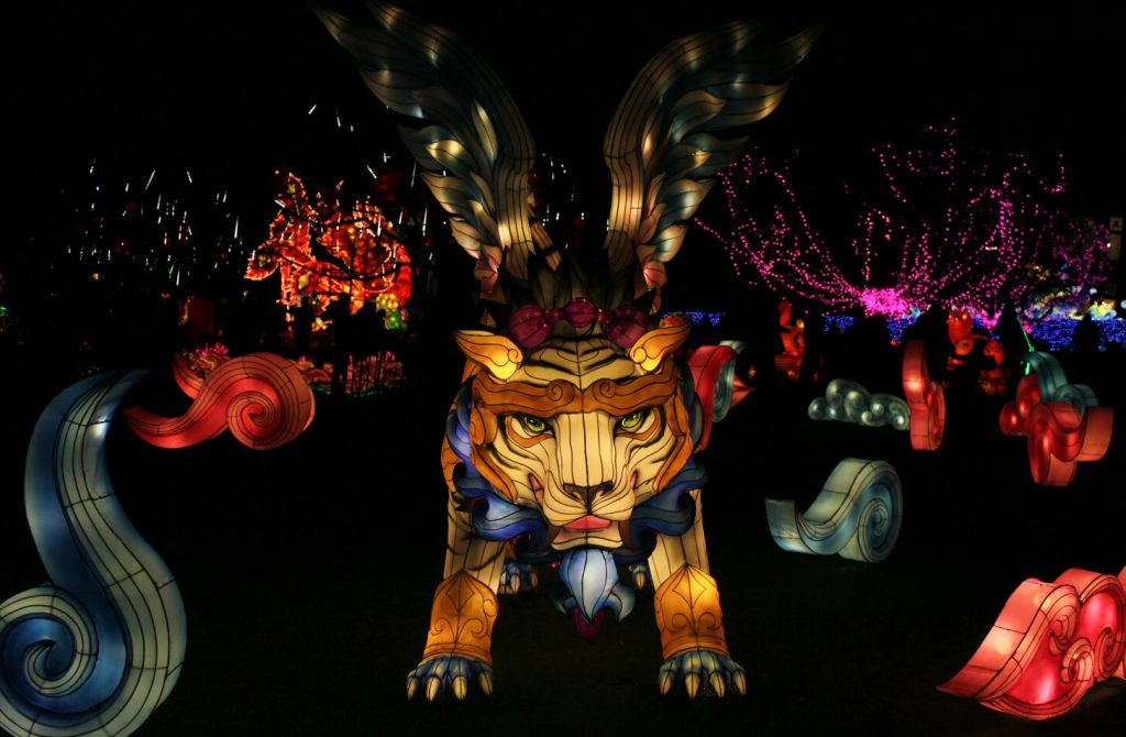 The Giant Lanterns of China, Edinburgh Zoo
